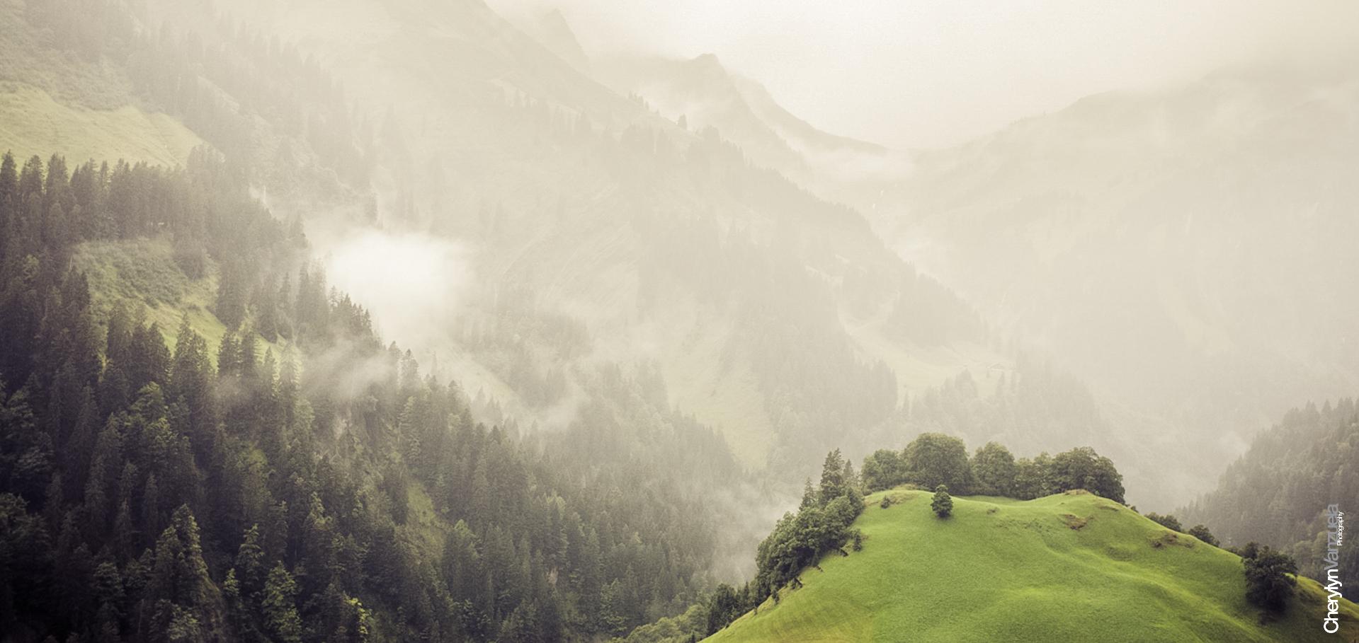 Hochtannbergpass - Österreich